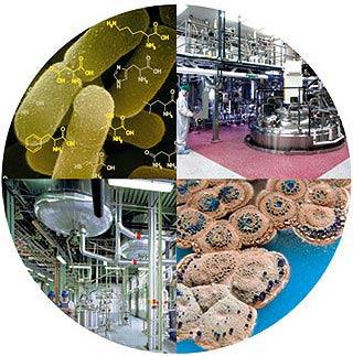 Thực trạng ngành công nghệ sinh học Trung Quốc