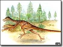 Hóa thạch khủng long bị thương cung cấp nhiều thông tin quý giá