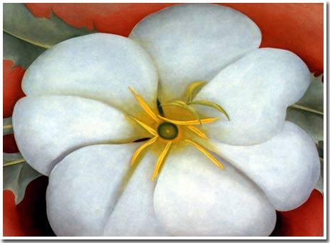 Tại sao hoa lại đẹp?