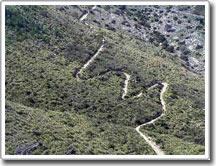 Tại sao trên núi phải đi theo đường ziczac?