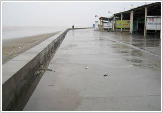 Nam Định: Ba năm mực nước biển dâng 20cm