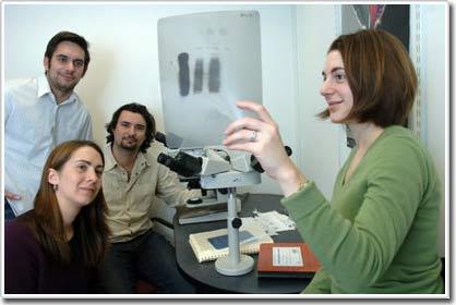 MicroRNA cường hóa giúp điều trị bệnh ung thư