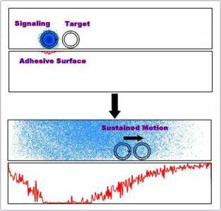 Lợi ích mới của sự phát tín hiệu hóa học