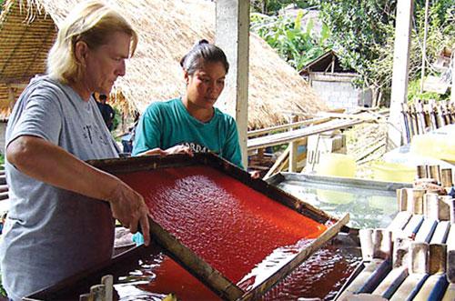 Thái Lan: Làm giấy bằng phân voi để bảo vệ môi trường