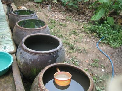 Sốt xuất huyết tăng do các bể chứa nước