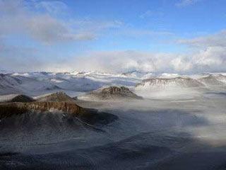 Rêu và côn trùng từng thống trị Nam cực