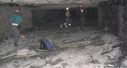 Khu rừng hóa thạch khổng lồ trong hầm mỏ