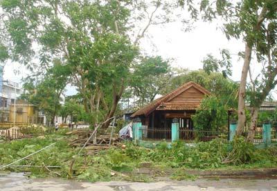 Thành phố Đồng Hới (Quảng Bình) ngổn ngang cây đổ.