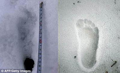 Phát hiện dấu chân Người tuyết ở Nepal