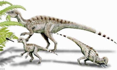 Lần đầu tiên phát hiện loài khủng long ăn tạp