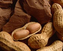 Những trẻ quá nhỏ ăn đậu phộng có dễ bị dị ứng hay không?