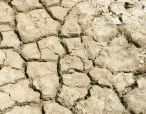 Đất cằn cỗi vì hiệu ứng nhà kính