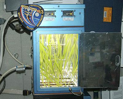 Sản xuất bia trên trạm vũ trụ