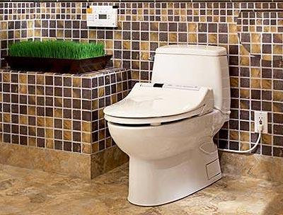 Bồn cầu không cần giấy vệ sinh