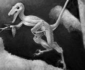 Phát hiện khủng long chỉ to bằng... con thỏ