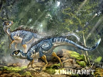Trung Quốc: phát hiện loài khủng long có lông cổ nhất