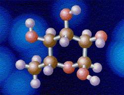 Ứng dụng sinh học phân tử trong y học