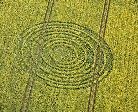Những vòng tròn kỳ lạ tại Anh