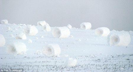 Những kiện tuyết độc đáo tại Mỹ