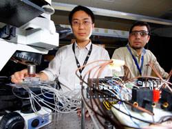 Phòng lab trên chip