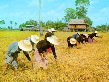 Đông Nam Á chịu ảnh hưởng nặng của hiệu ứng nhà kính