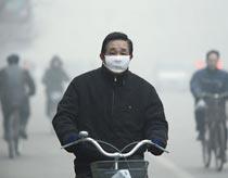 Không khí bẩn mất 3 ngày gây đột biến gene