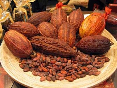 Cacao tốt cho bệnh nhân huyết áp cao