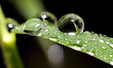 Tại sao hạt mưa có nhiều kích cỡ khác khau?