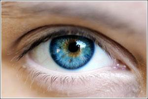Điều trị thành công liệu pháp gen cho người mù