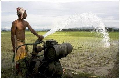 Nạn hoang phí nước đe dọa châu Á