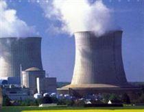 Các nhà khoa học thảo luận về điện hạt nhân tại Việt Nam