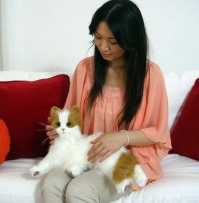 Dream Cat Venus - chú robot mèo dễ thương