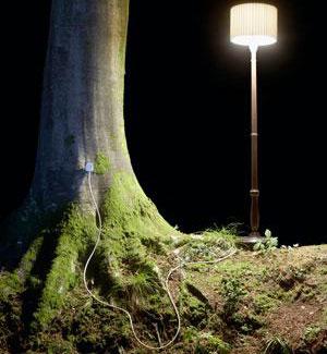 Cây cối có thể trở thành nguồn năng lượng sạch