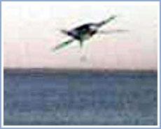 Vật thể bay lạ tại Argentina