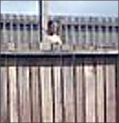 Bóng ma xuất hiện bí ẩn bên bờ tường rào