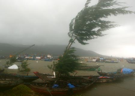 Bão số 9 đã suy yếu thành áp thấp nhiệt đới