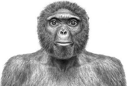Phát hiện hóa thạch người tiền sử 4,4 triệu năm tuổi