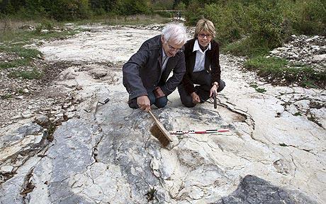 Tìm thấy dấu chân khủng long lớn nhất thế giới
