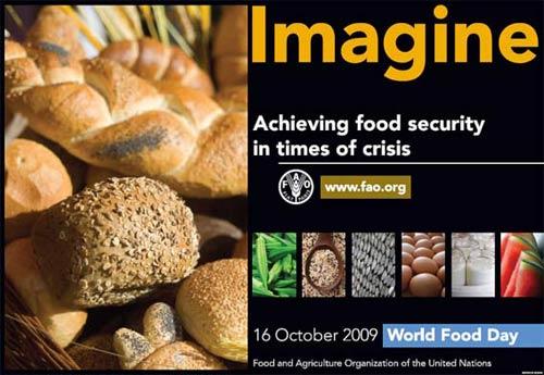 Giữ an ninh lương thực trong thời kỳ khủng hoảng kinh tế