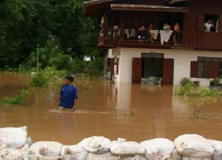 Ngày 'Hành động vì biến đổi khí hậu quốc tế'