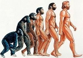 Loài người vẫn đang tiến hóa
