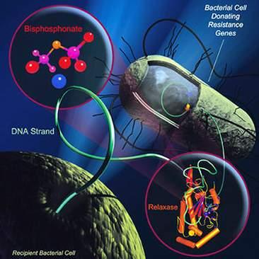 """Vi khuẩn kháng kháng sinh: Do """"kiếm"""" cũ đã cùn?"""