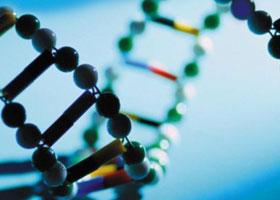 Đột phá gene mở ra cuộc cách mạng điều trị ung thư