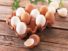 Thịt, sữa và trứng không liên quan đến ung thư vú