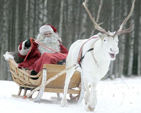 Bạn đồng hành của ông già Noel bị đe dọa
