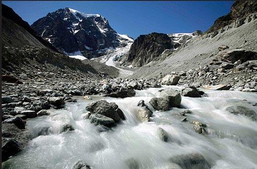 Sau COP 15 - làm gì để Trái đất bớt nóng?