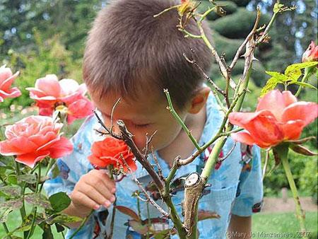 Phát hiện lạ kỳ về khứu giác thời thơ ấu
