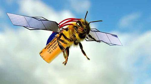 Chuyện về phi đội robot ong tự trị