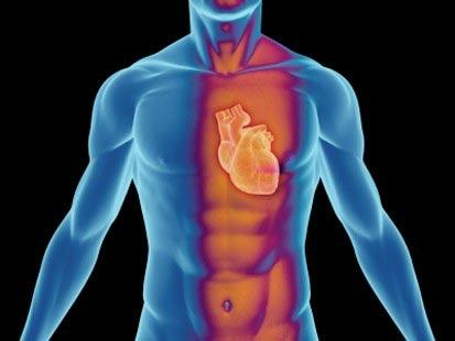 IQ thấp dễ mắc bệnh tim