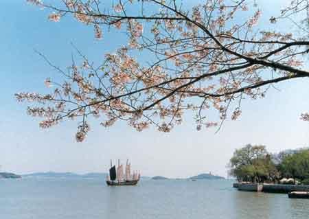 Thả cá chống ô nhiễm nước tại Trung Quốc